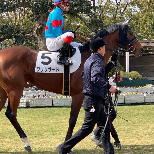 2019/04/28(日) グリッサード JRA(日本中央競馬会)出走情報