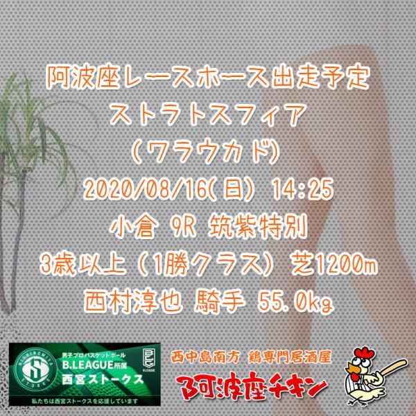 2020年08月16日 阿波座レースホース出走予定(ストラトスフィア)