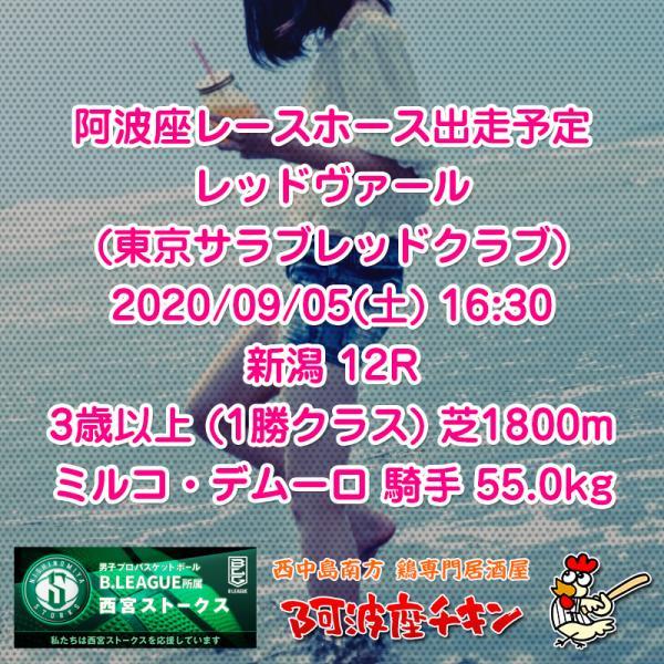 2020年09月05日 阿波座レースホース出走予定(レッドヴァール)