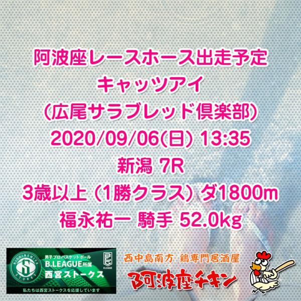 2020年09月06日 阿波座レースホース出走予定(キャッツアイ)