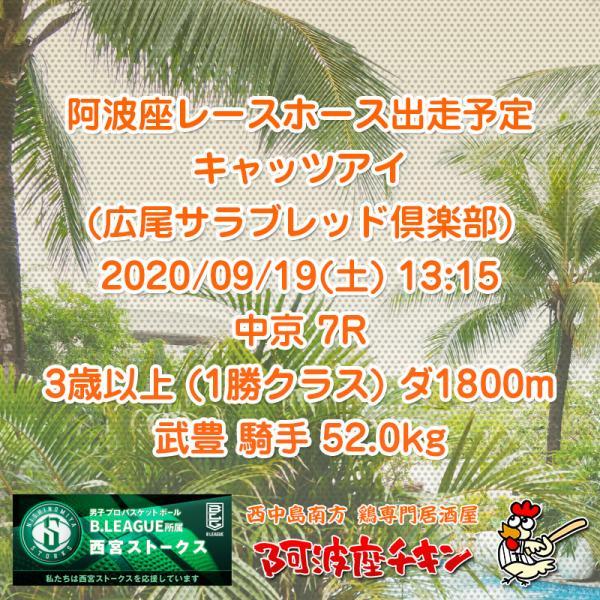 2020年09月19日 阿波座レースホース出走予定(キャッツアイ)