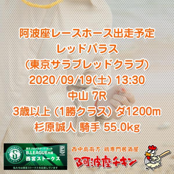 2020年09月19日 阿波座レースホース出走予定(レッドパラス)