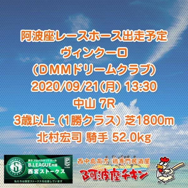 2020年09月21日 阿波座レースホース出走予定(ヴィンクーロ)