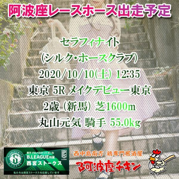 2020年10月10日 阿波座レースホース出走予定(セラフィナイト)