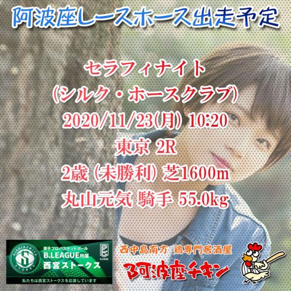 2020年11月23日 阿波座レースホース出走予定(セラフィナイト)