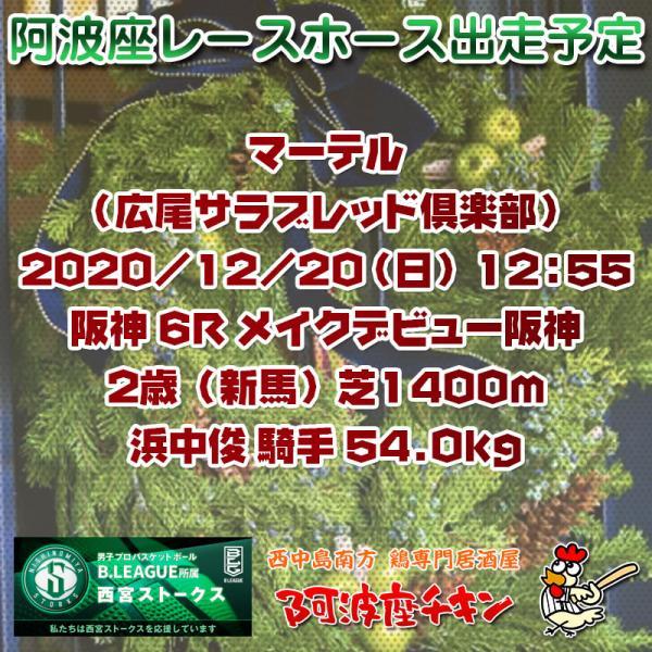 2020年12月20日 阿波座レースホース出走予定(マーテル)