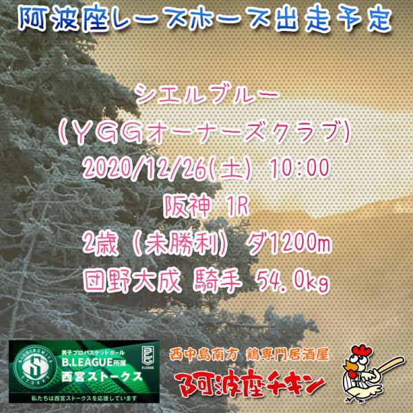 2020年12月26日 阿波座レースホース出走予定(シエルブルー)