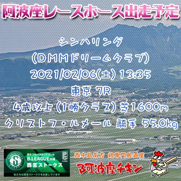 2021年02月06日 阿波座レースホース出走予定(シンハリング)