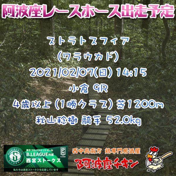 2021年02月07日 阿波座レースホース出走予定(ストラトスフィア)