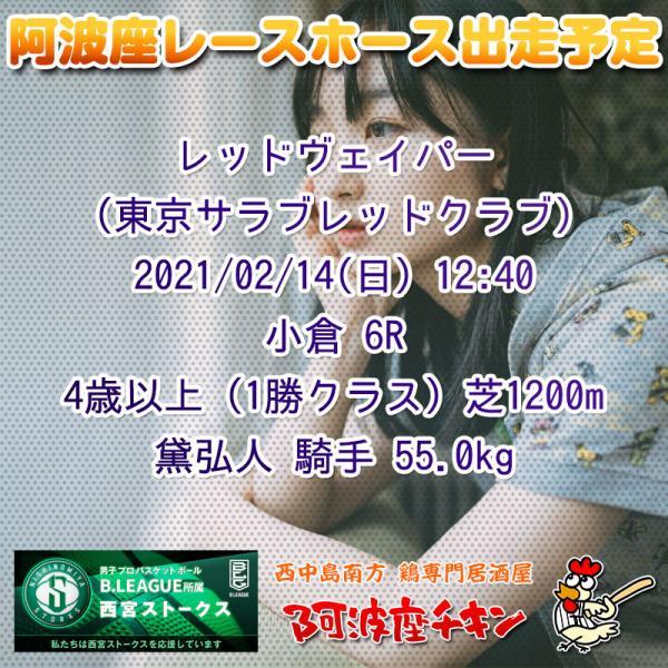 2021年02月14日 阿波座レースホース出走予定(レッドヴェイパー)