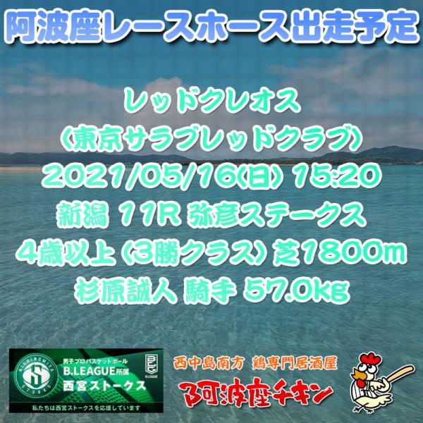 2021年05月16日 阿波座レースホース出走予定(レッドクレオス)
