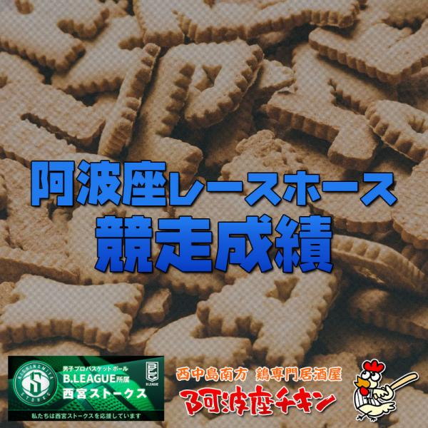 2021/06/13 JRA(日本中央競馬会) 競走成績(ソナトリーチェ)(アメリカンウェイク)