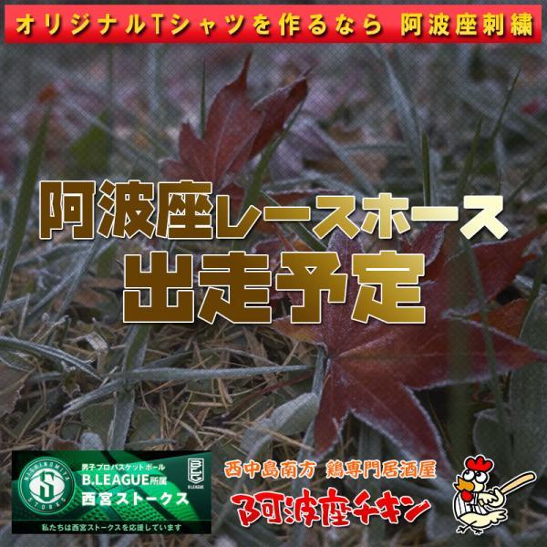 2021年09月26日 阿波座レースホース出走予定(アランデル)